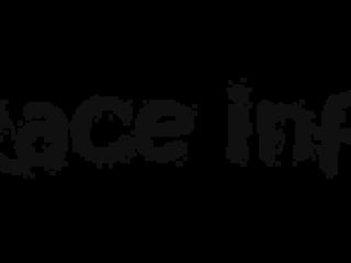 RaceInfo
