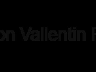 Simon Vallentin Rally