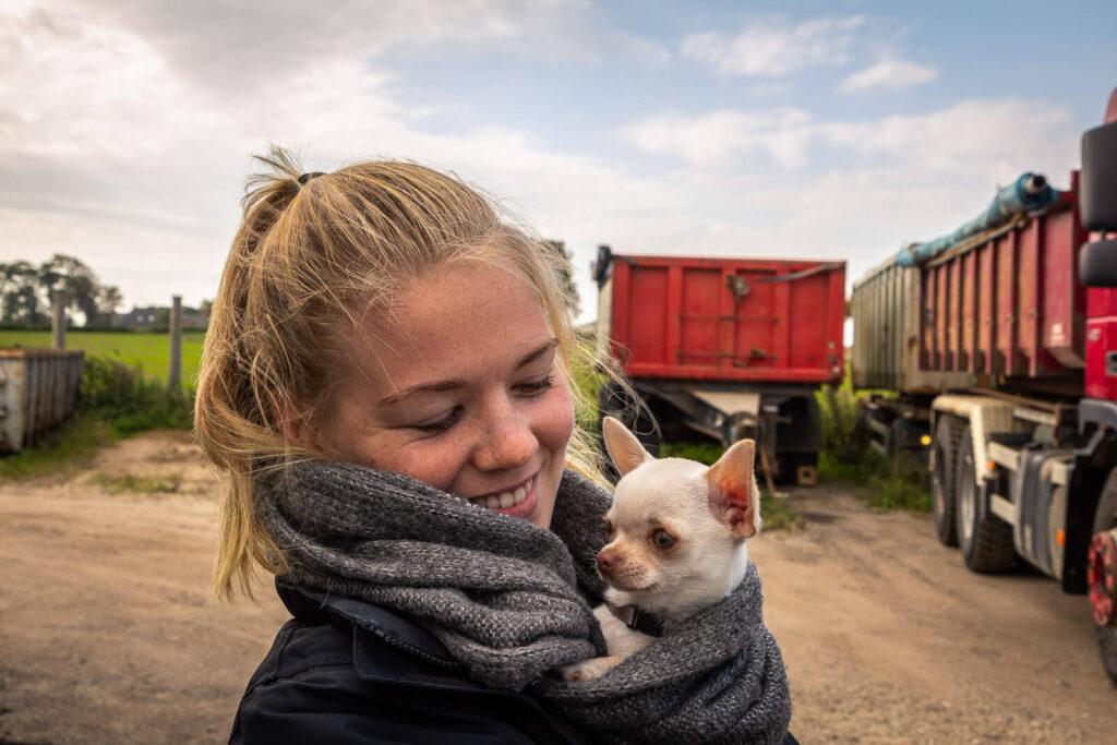Hunde- og portræt fotografering - SCPhoto