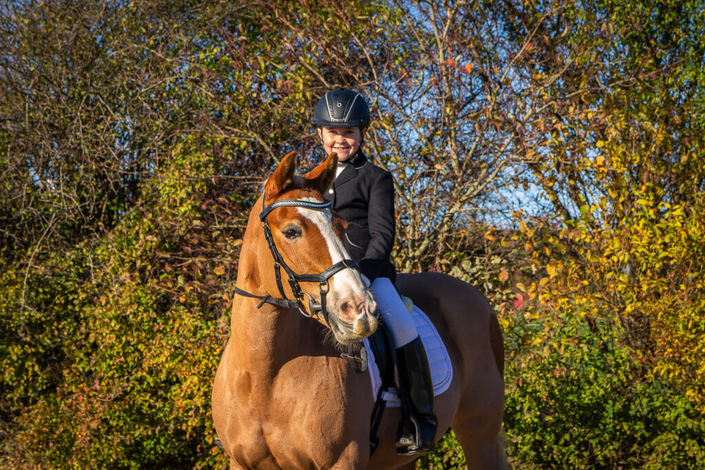 Heste fotografering - SCPhoto