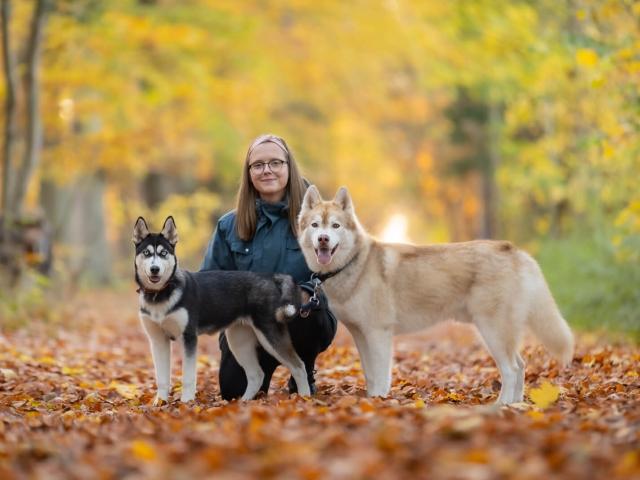 Hundefotografering slagelse
